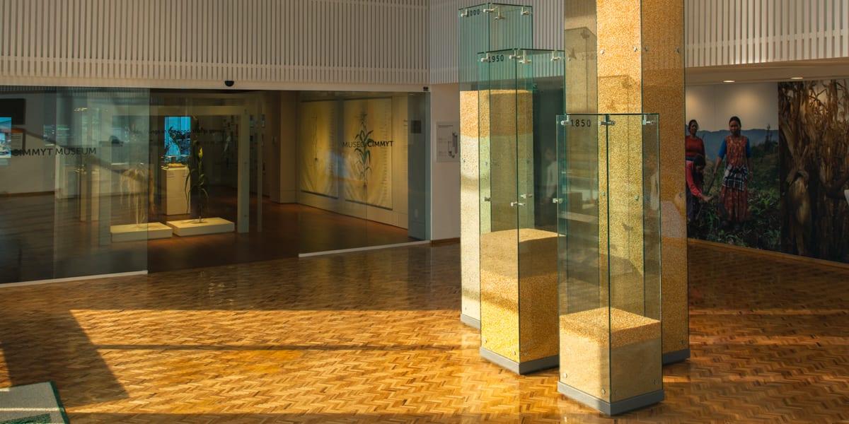 CIMMYT Museum